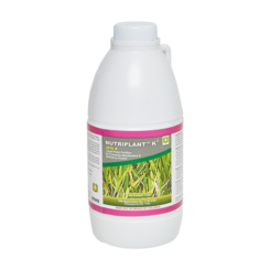 Nutriplant Potassium +
