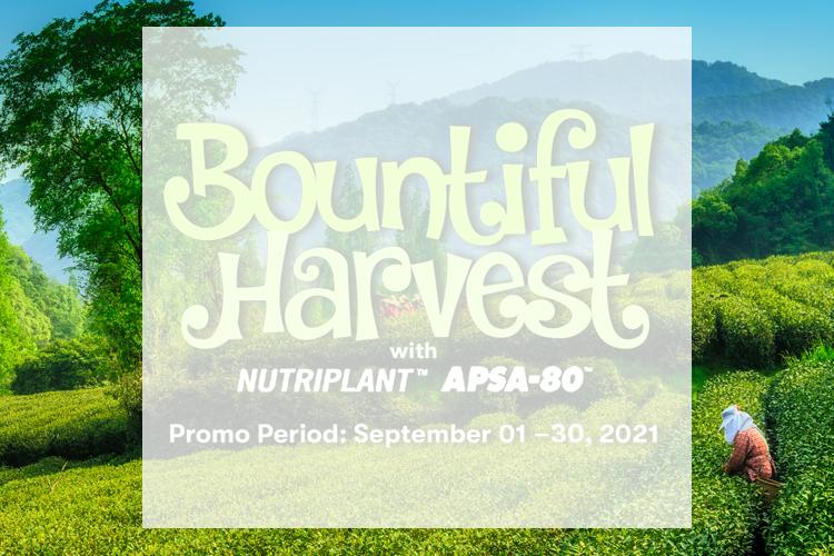 Resize_Agri Promo_Bountiful Harvest_Banner_Mob_new.jpg