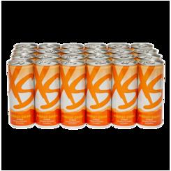 XS™ Energy Drink - Citrus (1 Case)